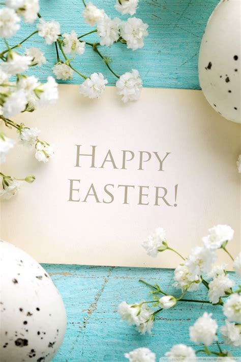 wallpaper iphone 6 easter 30 cute easter iphone wallpapers available ideas