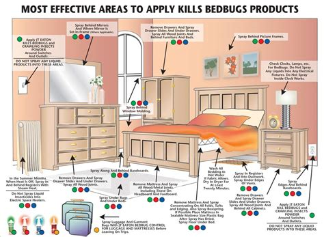 Easy Way To Get Rid Of Bed Bugs How To Kill Bed Bugs Tips On How To Eliminate Bed Bugs In