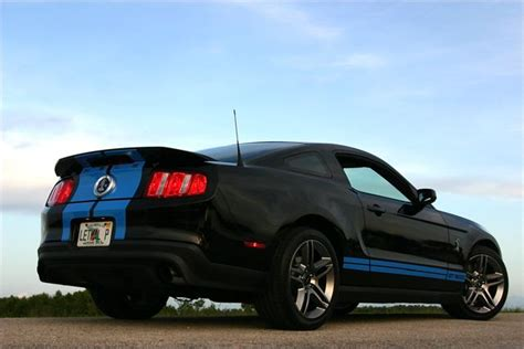 black mustang with grabber blue stripes photoshoot for lethal s 2010 gt500 black with