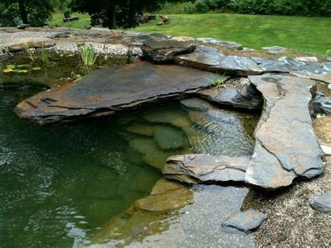 natural backyard pools best 25 natural pools ideas on pinterest natural backyard pools natural swimming