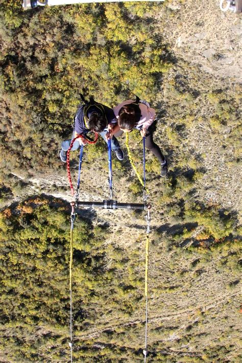 new zealand bungee swing 440 foot bungy vs 394 foot swing which one would you do