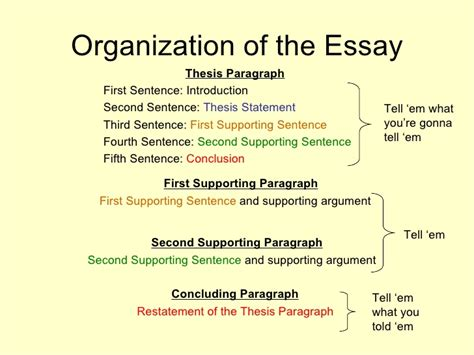The Basics Of Essay Writing by Basic Essays