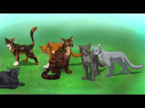 The Warrior Book Report by Book Report Warrior Cats The Sight