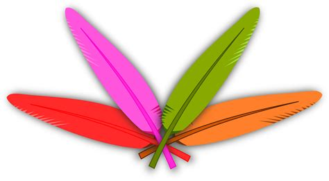 colored feathers clipart colored feather