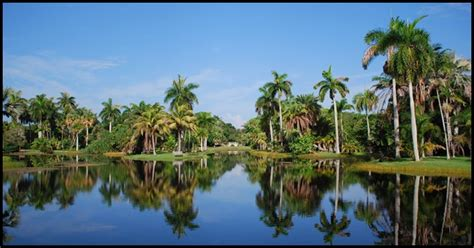 Fairchild Tropical Botanic Garden Miami Fl Prism Creative Miami S Only Culture Crusaders The Kong Is Our Favorite Slice Of