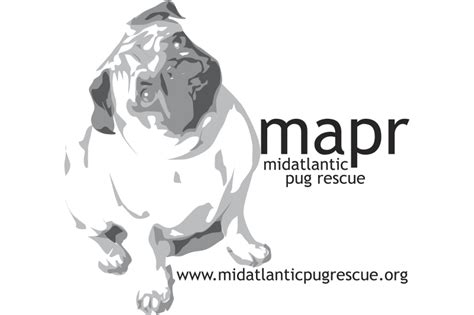 pug rescue south carolina pug rescue profile mid atlantic pug rescue the pug diary