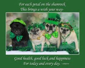 pugs and kisses a wish novel books st s day all things on 188