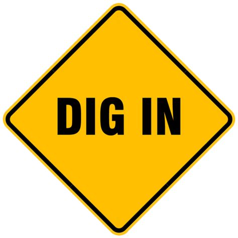 Dig No More by The Do S And Don Ts Of A Behavioral Based Plus