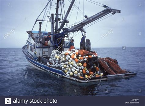alaska fishing boat investor salmon seiner fishing vessel loaded heavy with fish and