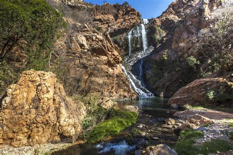 Walter Sisulu National Botanical Gardens The Ultimate Guide To Johannesburg 25 Ways To Fall In With This City