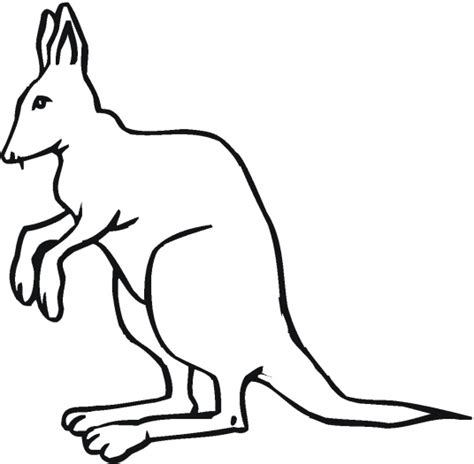 coloring page kangaroo kangaroo outline to colour clipart best