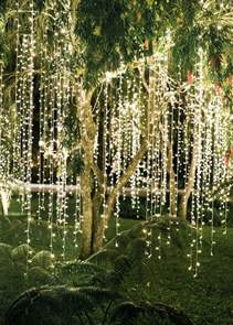 25 best lights in trees ideas on pinterest