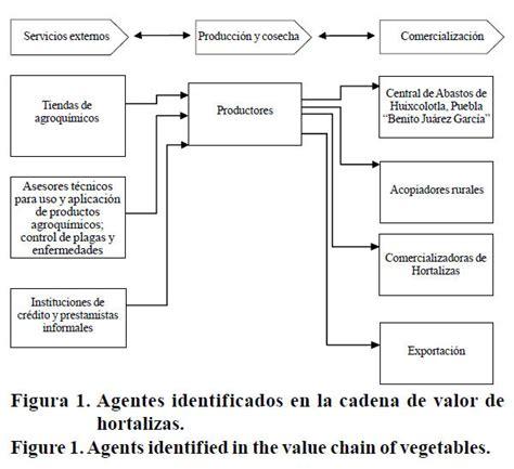 tipos de cadenas productivas en mexico an 225 lisis de producci 243 n y comercializaci 243 n hort 237 cola del