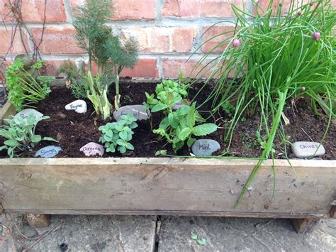 growing a container herb garden a beautiful space