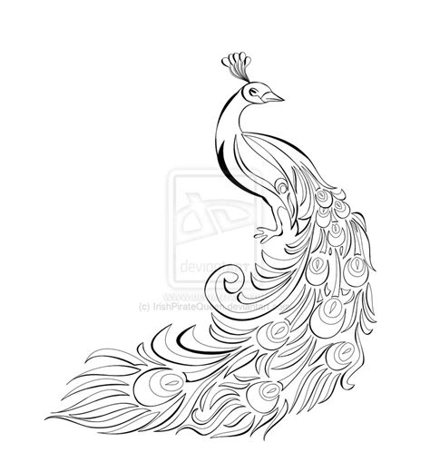 simple peacock coloring page peacock drawing black and white cliparts co