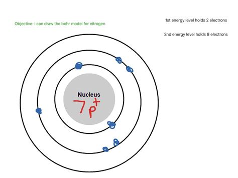 nitrogen bohr diagram nitrogen model www pixshark images galleries with