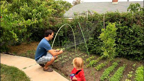 easy  simple cucumber trellis  vertical growing