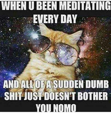 Spiritual Memes - the 25 best spiritual awakening ideas on pinterest