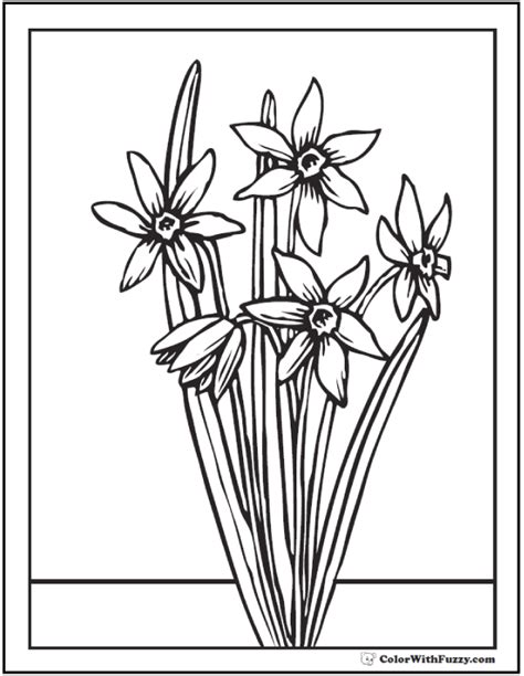 narcissus flower coloring page spring flowers coloring page 28 customizable printables