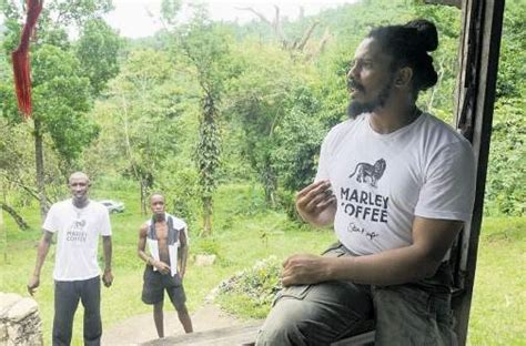 marley coffee expanding distribution  canada