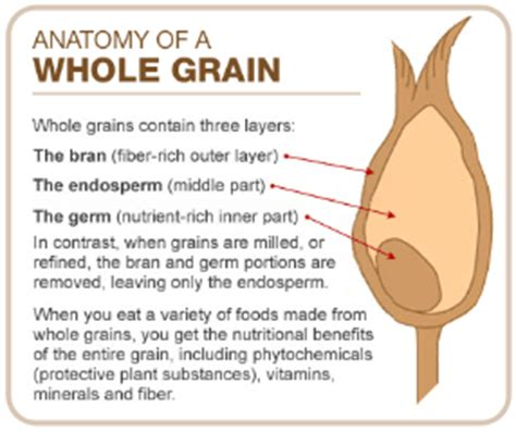whole grains before bed grain the columbian exchange
