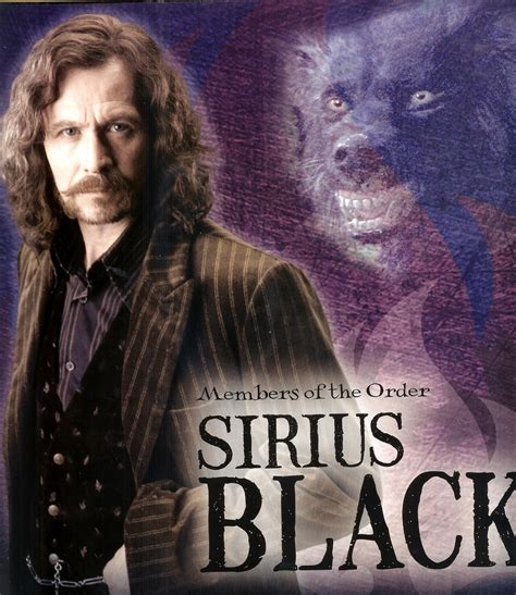 harry potter characters sirius black in belgium is the name sirius black in a very different