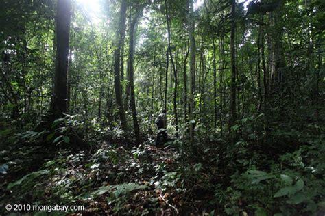 Dari Sumber Daya Agraria Menuju Penataan Lingkungan Hidup jika moratorium hutan setop masalah besar menanti basec petualang