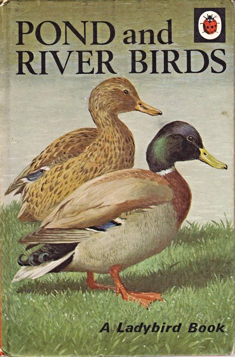 water a duck darley novel books pond and river birds a vintage ladybird book nature series
