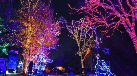 zoo lights dc 2017 zoolights free lights festival at the smithsonian s