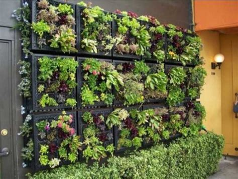 vertical garden ideas of 25 creative ways to plant a