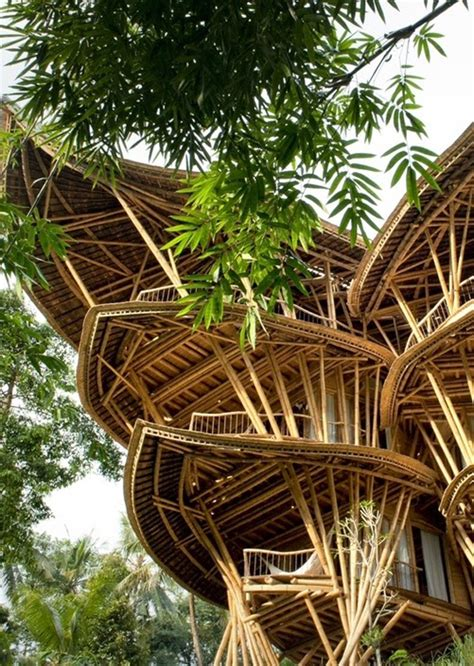bamboo house design bamboo house design joy studio design gallery best design