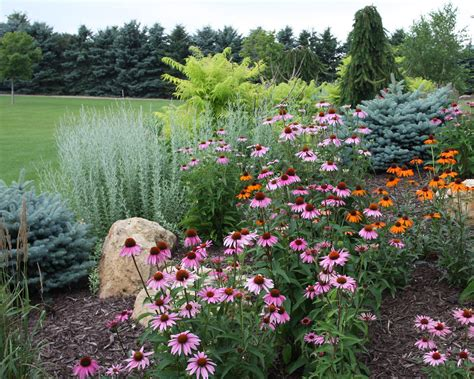 layering your landscape using trees shrubs and perennials pahl s market apple valley mn