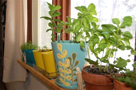 Pinterest Gardening Crafts - pinterest garden crafts party invitations ideas