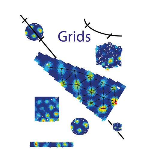 gridlayout empty cell grid cell data from o keefe lab
