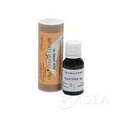 thuya occidentalis medicina integrativa cemon medicina omeopatica farmacia igea