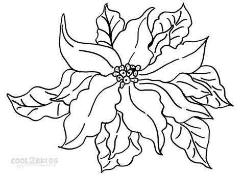 coloring page christmas flower printable poinsettia coloring pages for kids cool2bkids