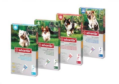advantix 2 for dogs advantix petduka