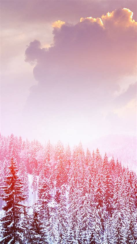 mo winter mountain snow white red nature papersco
