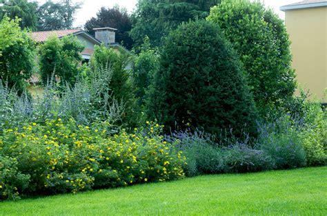 lavanda in giardino in giardino con i nipoti flora 2000