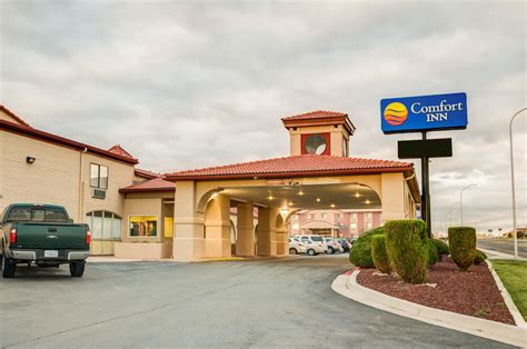 comfort inn santa rosa ca comfort inn santa rosa pet policy