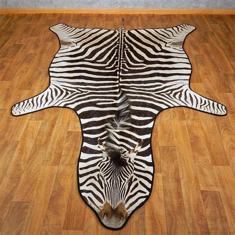 Zebra Rug For Sale by Zebra Shoulder Mount For Sale 15265 The
