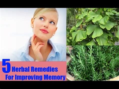 home remedies for memory improvement 28 images 11 home