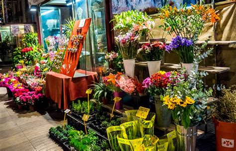 Flower Store by Fujtown 1 Fujairah Directory Tourism Packages