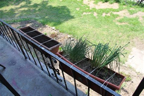 deck railing planter iimajackrussell garages best