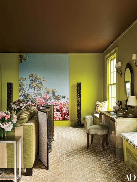 ceiling paint ideas  inspiration  architectural