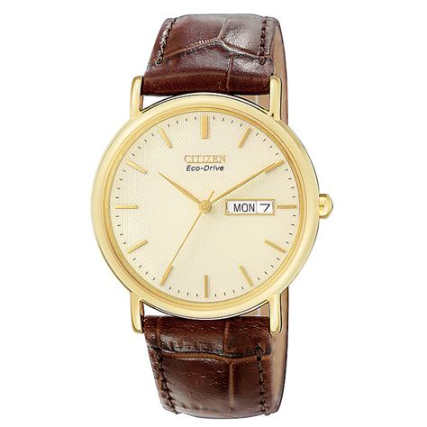 citizen s gold plated eco drive h samuel