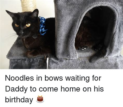 noodles in bows waiting for to come home on his