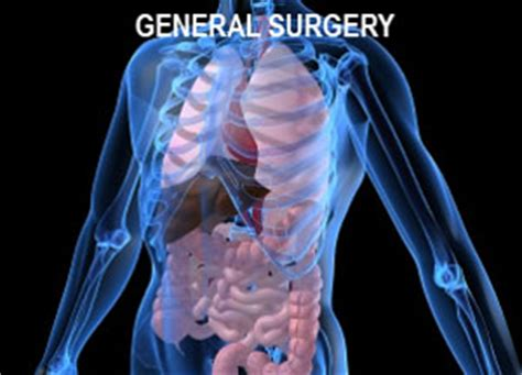 what are the divisions of the surgery section based on general surgery surgery