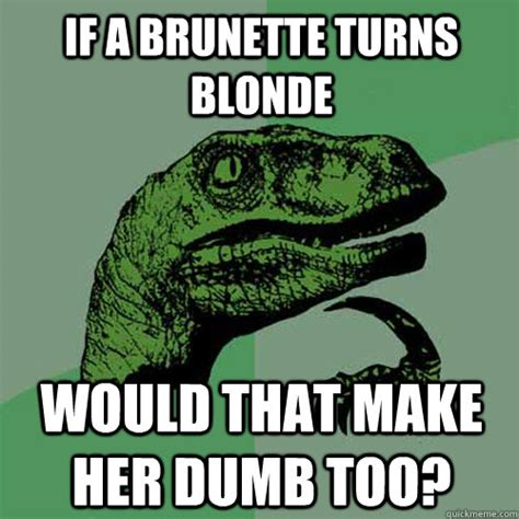 Funny Blonde Memes - if a brunette turns blonde would that make her dumb too