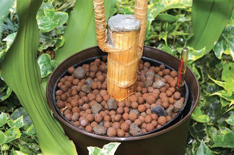 argilla per vasi argilla espansa per piante in vaso fior di leca
